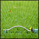 Statewide Lawn Management Guidelines